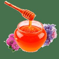 Мёд полевой
